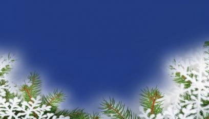 Winter Trees Blue